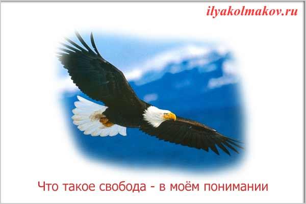 Что такое свобода
