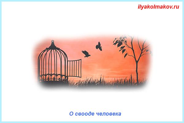 О свободе человека